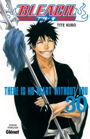 Bleach Vol.30