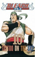 Bleach Vol.10
