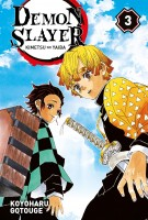 Demon Slayer Vol.3
