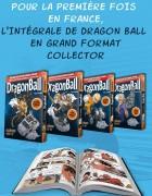 Image supplémentaire DRAGON BALL © 1984 by Bird Studio / Shueisha Inc.