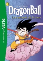 Mangas - Dragon Ball - Roman Vol.11