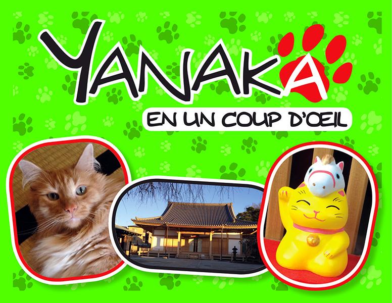http://www.manga-news.com/public/images/vols/Yanaka-en-un-coup-d-oeil-komikku.jpg
