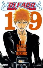 http://www.manga-news.com/public/images/vols/bleach_19.jpg