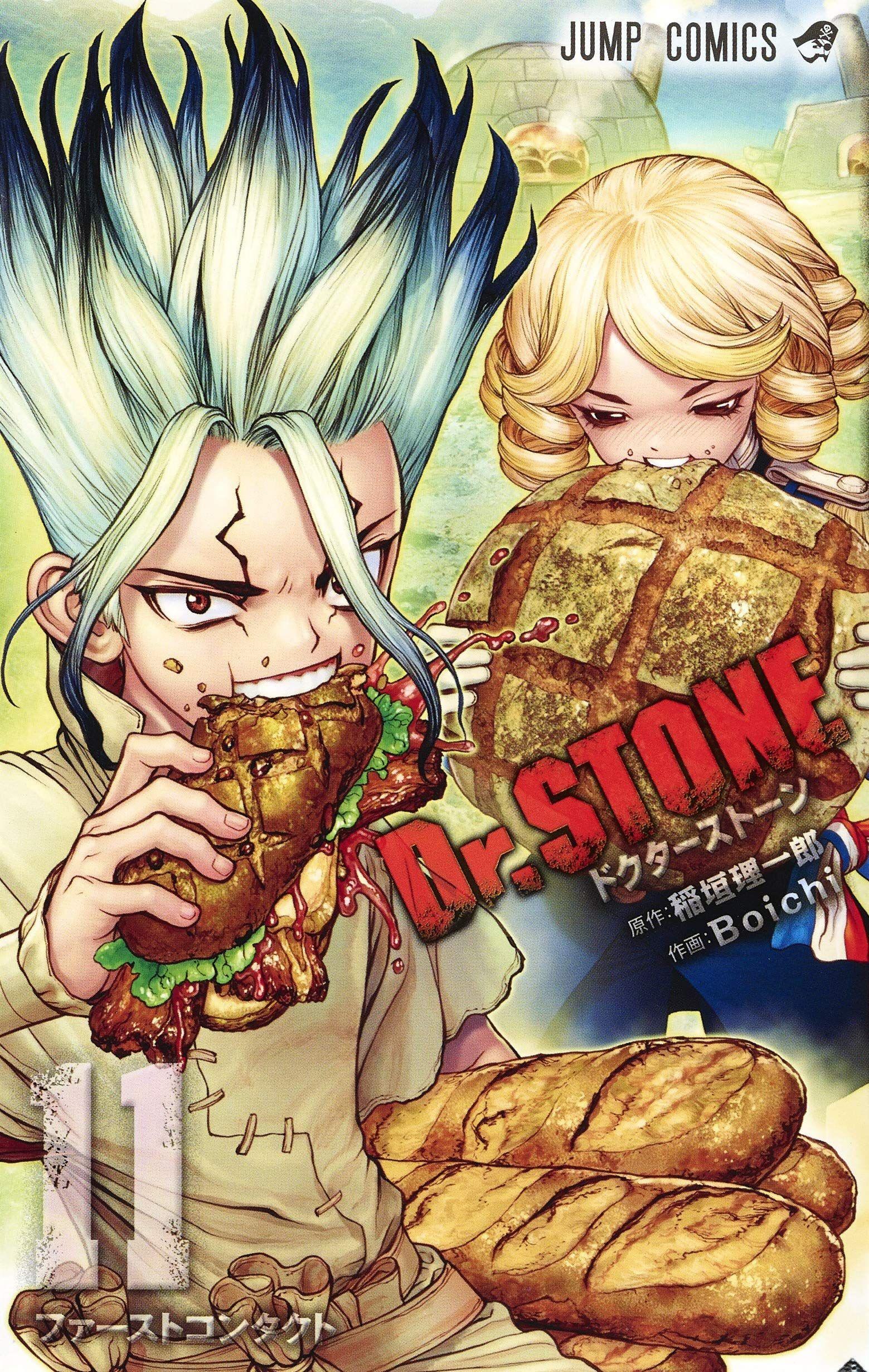 Manga - Manhwa - Dr. Stone jp Vol.11