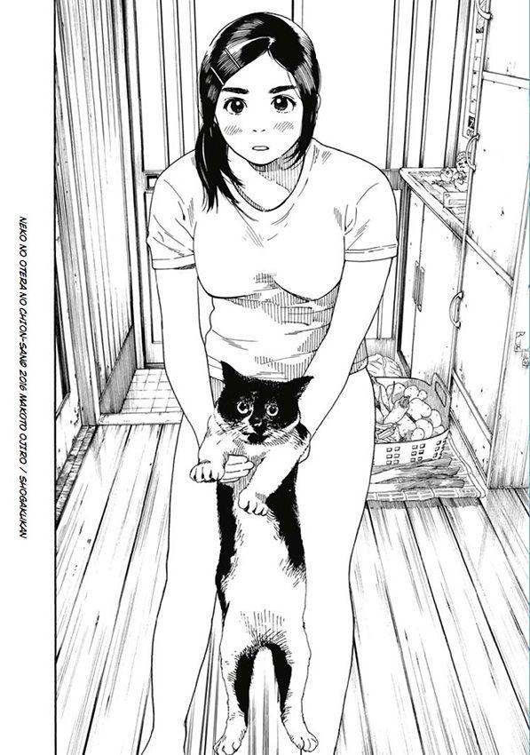 [ MANGA ] La fille du temple aux chats Fille-temple-chat-ext-2
