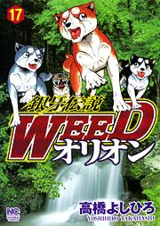 [MANGA/ANIME] Ginga Densetsu Weed Ginga-densetsu-weed-orion-17-hobunsha