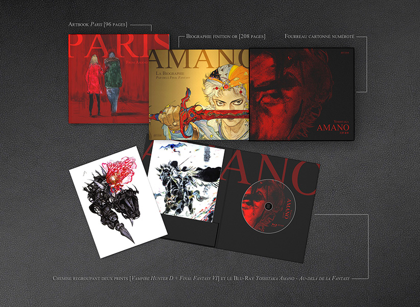 http://www.manga-news.com/public/images/vols/yoshitaka_amano-biographie-fantasy-edition-detail-pixnlove.jpg