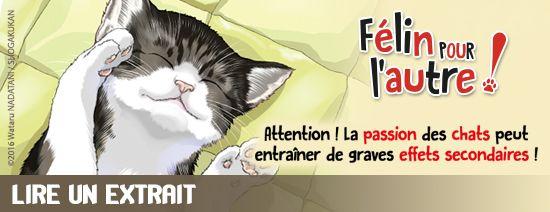 Preview-felin-pour-autre