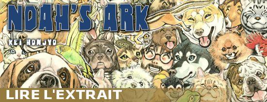 Noah-ark-preview
