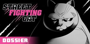 Street fighting cat dossier